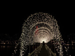 go into the light of the silent majesty of a winters night with harley and brett as they get lost in the magic of christmas in chickasha oklahomas - Chickasha Christmas Lights